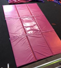 9 x Reversible Mats with Velcro Joining Strips