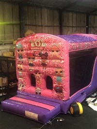 10ft x 29ft Pink & Purple Obstacle Course