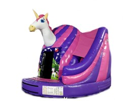 !! 17ft x 15ft Unicorn Twister Dome Slide Combo