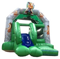 12ft x 16ft Dino A-Frame Bouncy Castle & Slide Combo